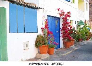 Street, houses, terra cotta pots and blooming plants, Giniginamar / Tuinaje, Fuerteventura