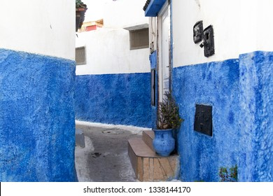 A street inside of the Kasbah of the Udayas, wall and jug with decorative plant are painted in traditional blue, Rabat, Morocco