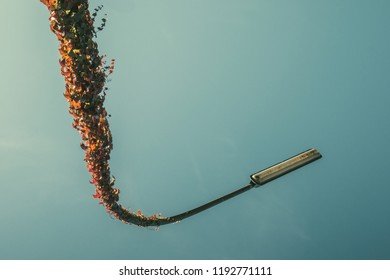 Street lamp with ivy upside-down