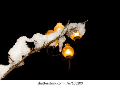street lamp at night with tree branch with snow .con night background ...