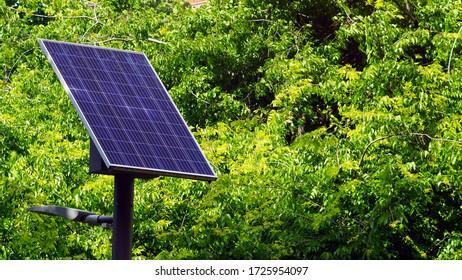 Street lamp poles powered by solar energy