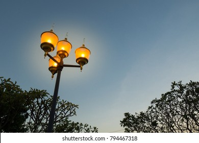The street lanterns or the lamppost are shining in the evening, with blurry background