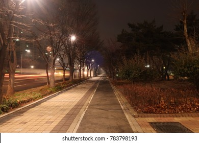 Street light in the dark and Park