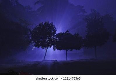 street light and mist