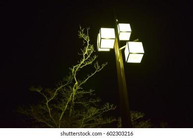 Street Light taken at tokyo
