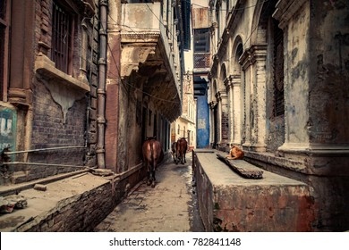 Street, The narrow alleys of old Varanasi's old town, Old street, Varanasi, Banaras, Uttar Pradesh, India, Asia