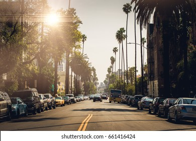 Street with palm trees in Los Angeles / US / June 2016