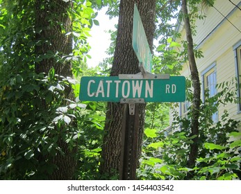 Street sign for Cat Town Road where my  cat-lovers live
