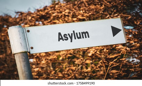 Street Sign the Direction Way to Asylum