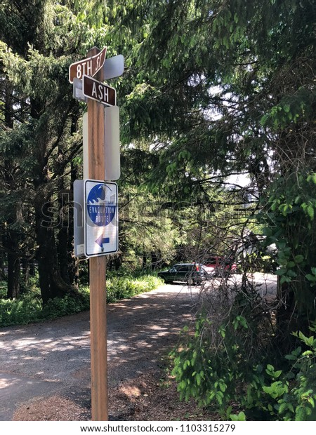 Street signs at the corner of 8th and Ash in Cannon Beach, Oregon plus tsunami evacuation route sign with street parking on the side
