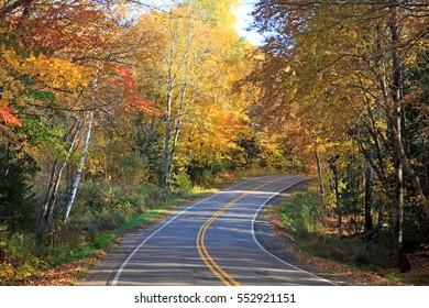 Street through Canadian fall foliage