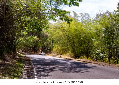 Street through the countryside with trees hanging over forming a canopy of shade above the asphalt road. Vehicle driving on left hand side coming around a corner uphill.