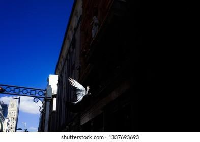 street urban details