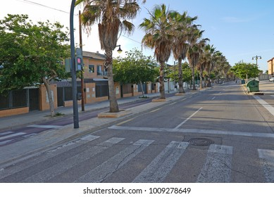 Street in Valencia with palm trees