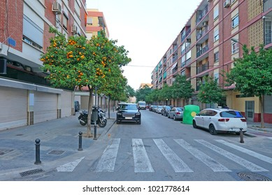 Street in Valencia with tangerine trees