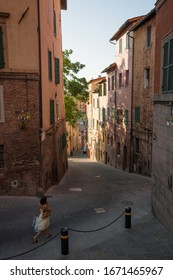 The street Via Degli Orti decorated with street light of the color of the Bruco district, used for the Palio race located in the historic center of Siena in Tuscany.