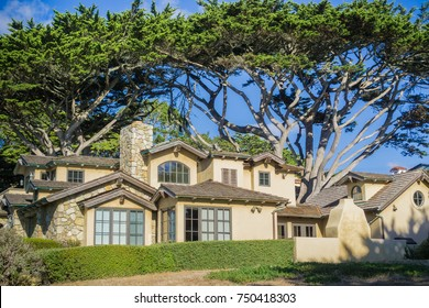 Street view of a house surrounded by large cypress trees in Carmel-by-the-Sea, Monterey Peninsula, California