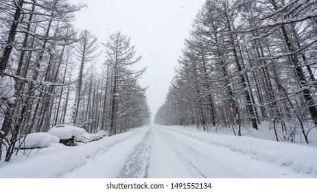 Street View In Snow Landscape