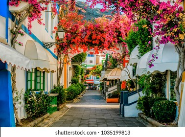 Street with white houses colonia shown in Puerto de Mogan, Spain. Favorite vacation place for tourists and locals on island. Little suburban street full of green and blooming trees. Jacaranda.