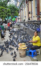 The street at Yangon, MYANMAR, July 2: woman selling birdseed on July 2, 2014 inYangoon, Myanmar. Birds were fed and comfortable living everywhere in the city