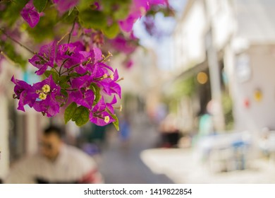 Streets of Alacati and Cesme in summer time at noon times in a sunny day