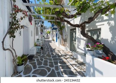 Streets of Naoussa Paros , Greek Island