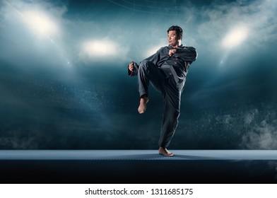 strength taekwondo action poses in fire stadium background.