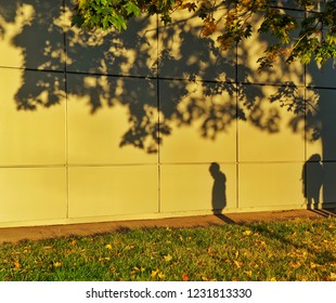 the strengths of the people on the phot of the yellow walls under the tree - the concept of parting
