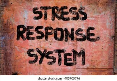 Stress Response System Concept