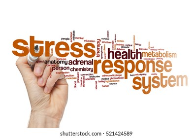 Stress response system word cloud