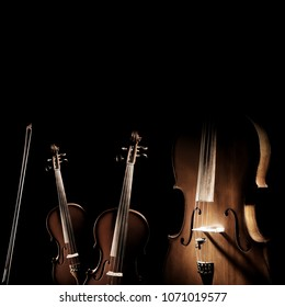 String instruments isolated. Violin, viola and cello orchestra instrument. Classical music instruments isolated on black background