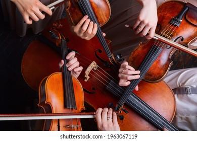 String quartet (violins, cello, alt (viola)), view from above - Shutterstock ID 1963067119