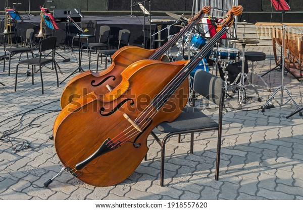 stringed-bowed-musical-instrument-double