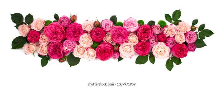 Strip of flowers frame isolated