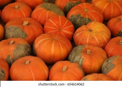 Stripe Pumpkin