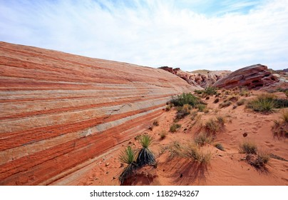 Striped cliff  - Fire Wave - Valley of Fire State Park, Nevada