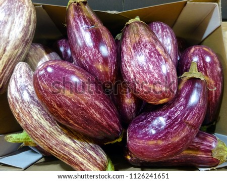 7b6bb7ce83 Striped Eggplants Box Stock Photo (Edit Now) 1126241651 - Shutterstock