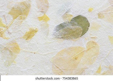 Striped flowers on Mulberry paper texture background