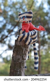 Striped funny cat hanging on top of pine stem