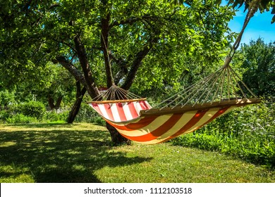 A striped hammock between two trees in a sunny green garden. Concept for holidays, summer vacation and lazy days.