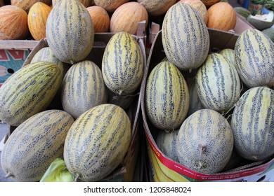 Striped honeydew melons