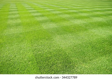 Stripes on grass
