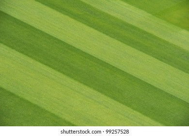 cricket pitch images stock photos vectors shutterstock