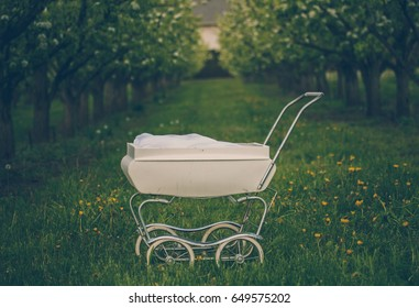 stroller in the orchard