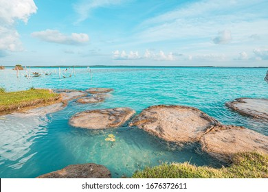 Stromatolites of Bacalar Lagoon, near Cancun in Riviera Maya, Mexico