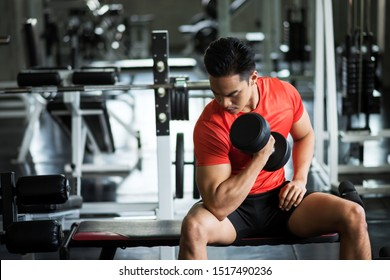Strong Asian muscle man sit and exercise biceps with heavy dumbbells with gym equipment background. Muscular body sportsman in sport fitness center. Bodybuilding and healthy lifestyle concept.