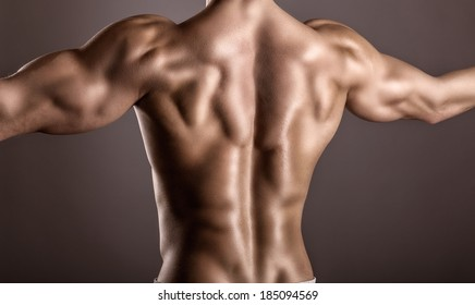 Strong athletic man back on a gray background