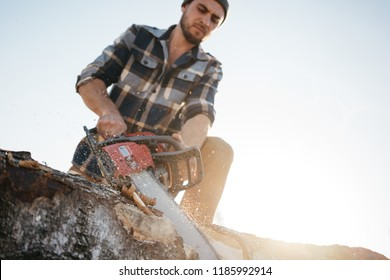 Strong bearded logger sawing a tree with chainsaw. Professional lumberman working  on sawmill