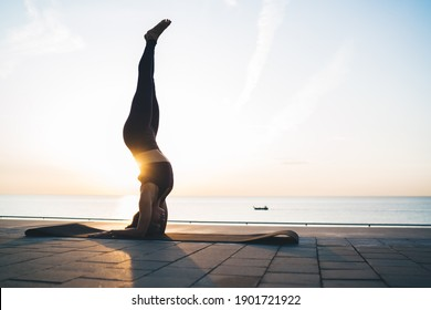 Strong female with athletic body standing on hands and head in asana stretching muscles, Caucasian woman practice yoga meditation at embankment keeping healthy lifestyle for physical wellness