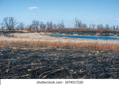 Strong fire in the steppe